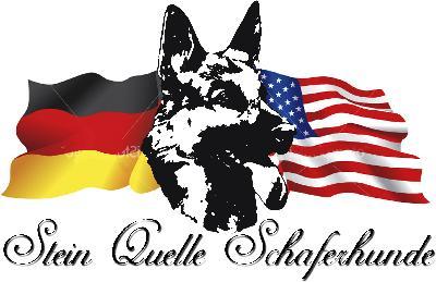 Buy Your Own Champion German Shepherds | German Shepherd Puppies